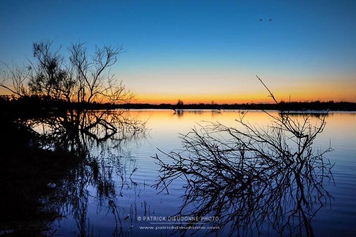 Coucher de soleil sur les étangs du domaine Ultima Frontiera