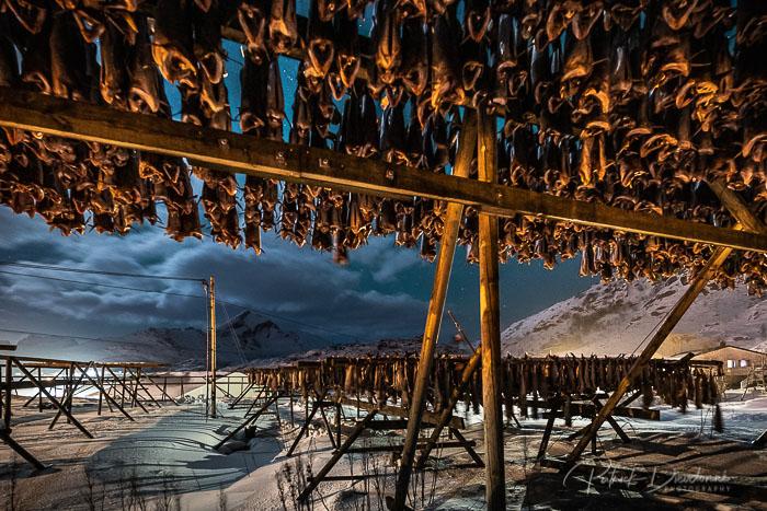 Séchoir à poissons, de nuit, Lofoten.