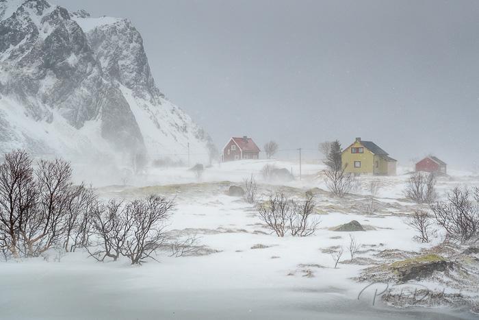 Lofoten, tempête de neige sur un village isolé.