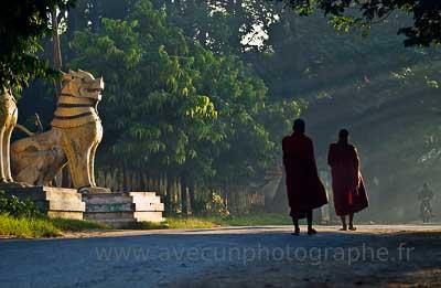 Mandalay, quête matinale des moines bouddhistes