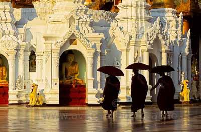 Yangon, pagode de Shwedagon, moines