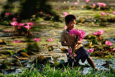 Garcon et fleurs, Cambodge